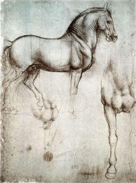 Leonardo da Vinci. Estudio de un caballo. Hacia 1490. Libreria Real. Windsor. Gran Bretaña.