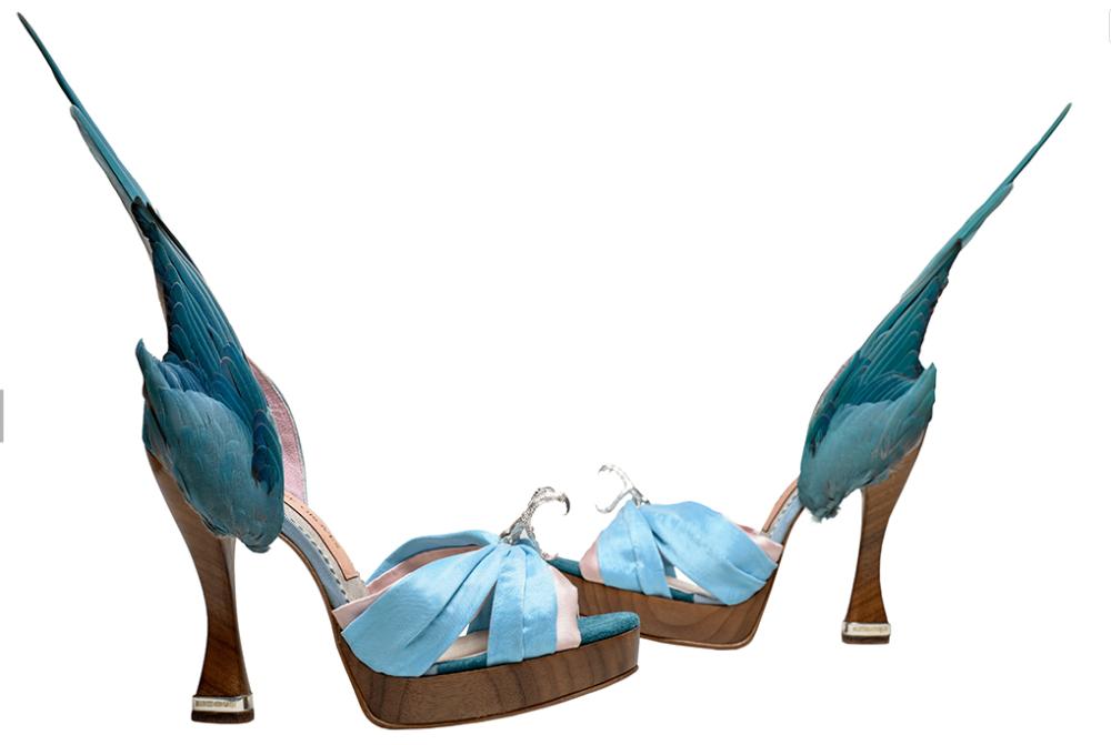 "Zapatos ""periquito"". Caroline Groves. 2014. Inglaterra. Fotografía Dan Lowe."
