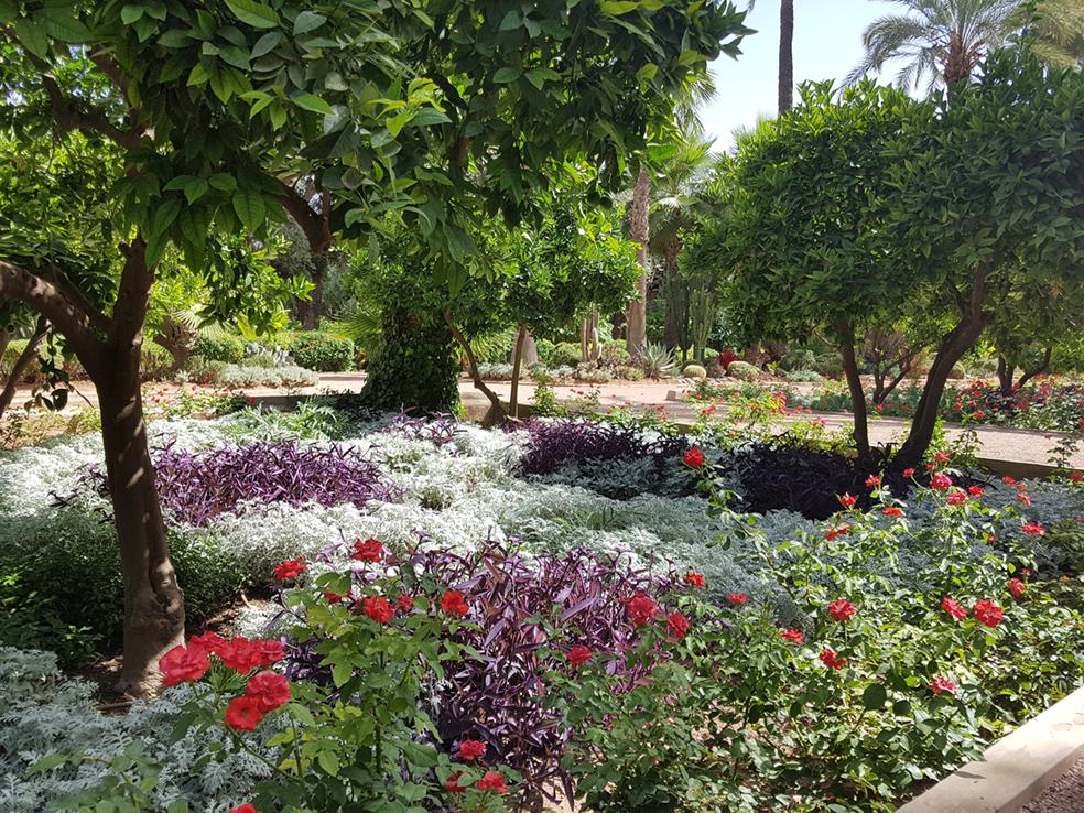 jardines la mammunia01
