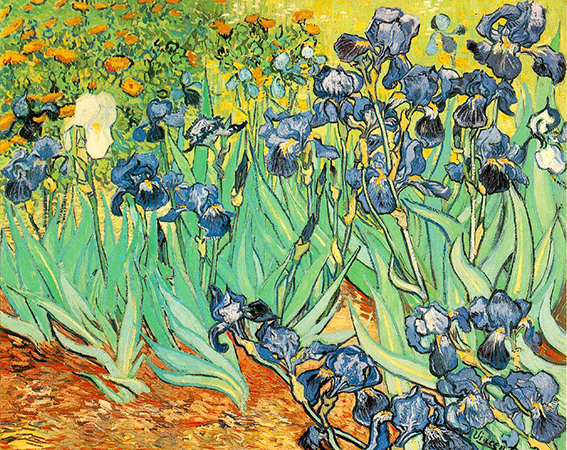 VanGogh-Irises_1