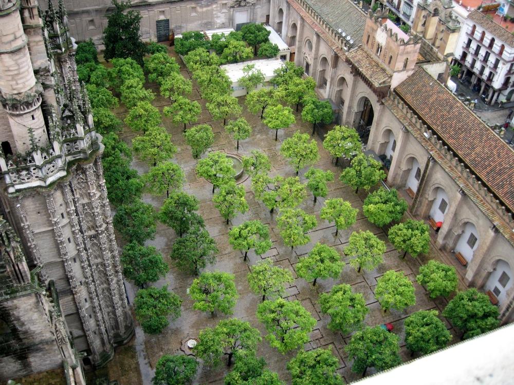 Patio de los Naranjos. Catedral de Sevilla.